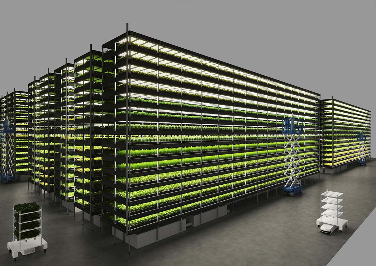 Digital photo of the Nordic Harvest vertical farming system.
