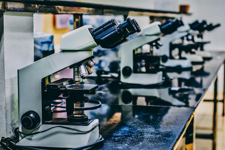 A row of microscopes.
